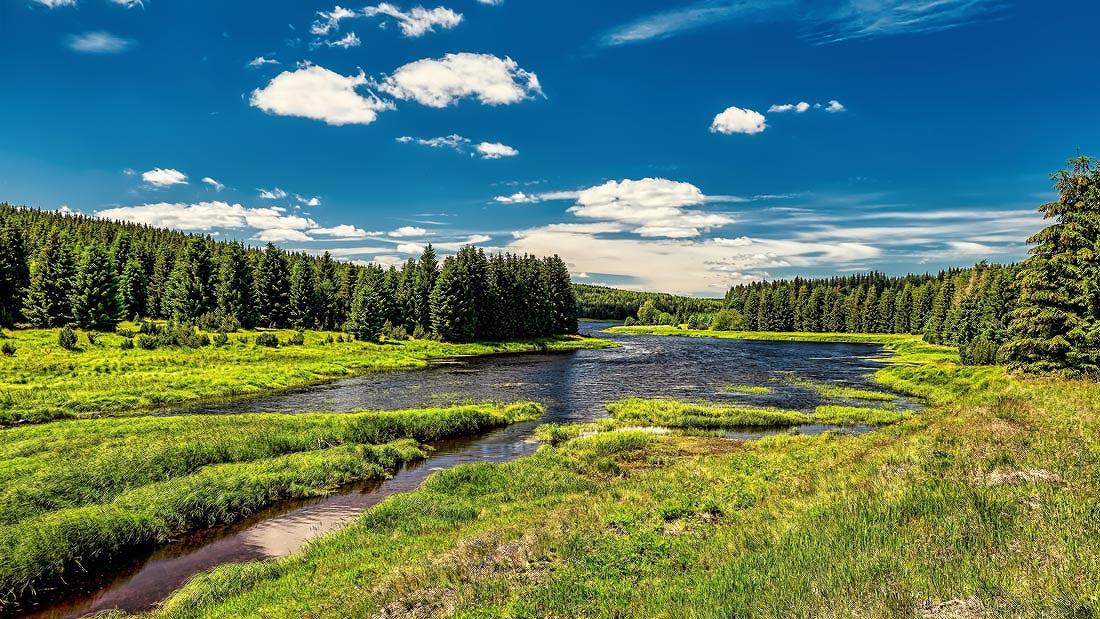 Flájský potok se vlévá do přehrady Fláje delta