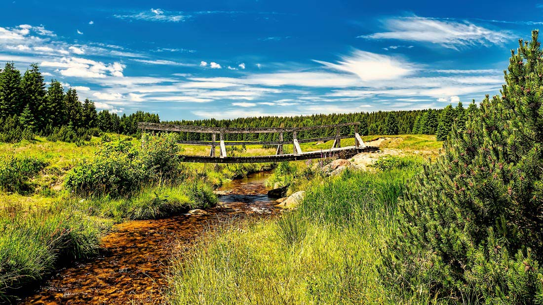 Krušné hory příroda flájský potok
