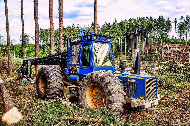 Fotka lesní techniky Harvestor ROTTNE 5005, těžba dřeva, kůrovec, Vysočina od Jan Stojan Photography ©