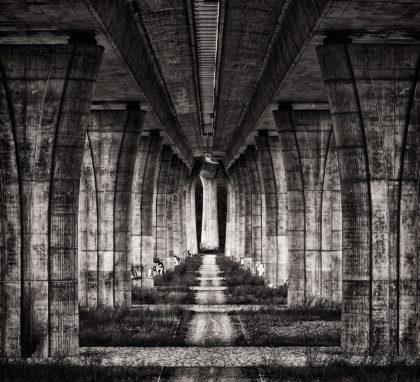 architektura most jan stojan fotograf pentax