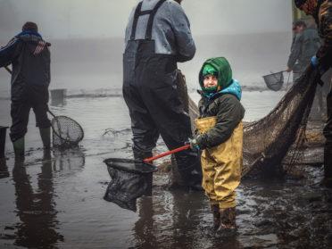 Výlov mezi paneláky rybář